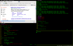 screenshot, showing my desktop (wmii, 4 xterms, Firefox)
